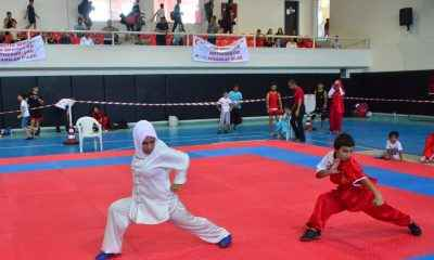 Wushu İller Arası Dostluk Turnuvası