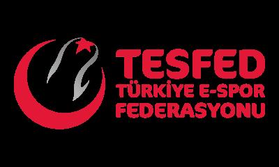 Espor Federasyonu Yönetim Kurulu açıklandı