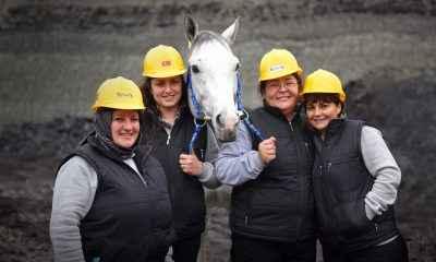 Atlar, Dünya Kadınlar Günü Koşusu için Veliefendi'de piste çıkıyor