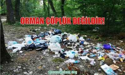 Orman Çöplük Değildir!