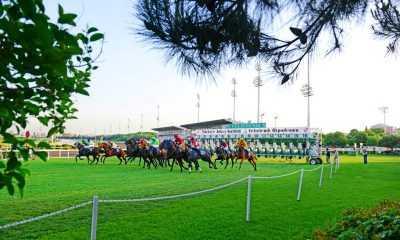 Atlar çime çıkıyor, İlkbahar – Yaz yarış sezonu başlıyor